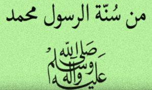 pengertian sunnah